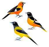 istock Stylized Birds 913375416