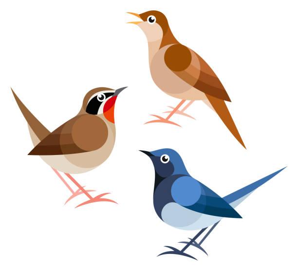 stockillustraties, clipart, cartoons en iconen met gestileerde vogels - zanger vogel