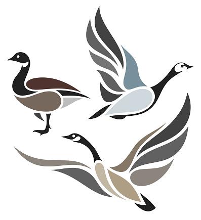Stylized Birds - Wild Geese
