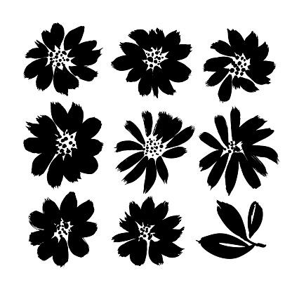 Stylized brush flowers vector set. Ink drawing flowers and plants, monochrome artistic botanical illustration.