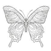 Stylized butterfly.