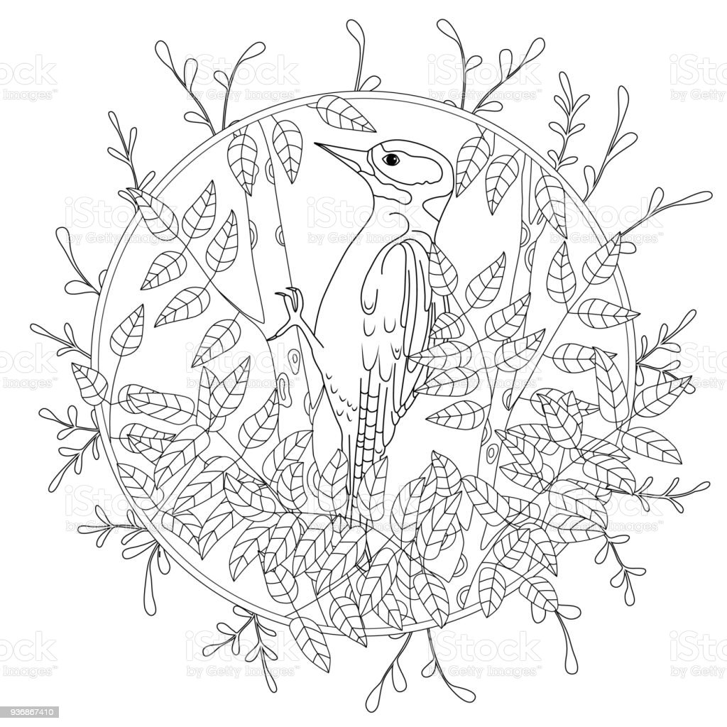 Coloriage Arbre Branche.Pic De Dessin Anime Stylise Sur Une Branche Darbre Croquis Dessine