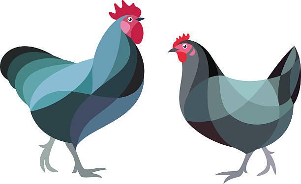 bildbanksillustrationer, clip art samt tecknat material och ikoner med stylized chicken - höna