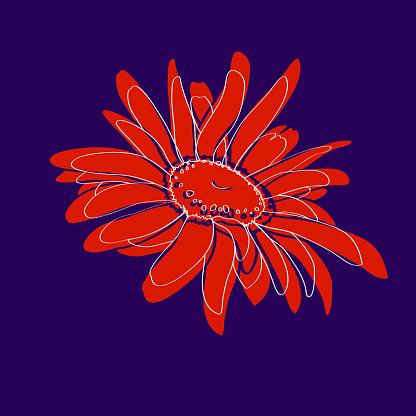 Stylized chrysanthemum flower bud on colored background