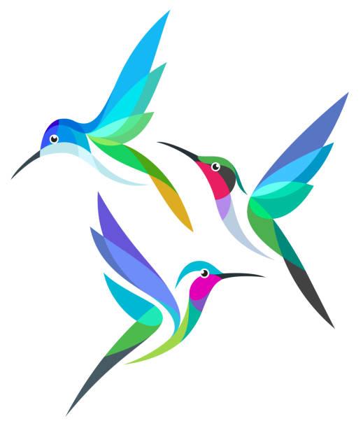 stylized colorful birds - hummingbird stock illustrations