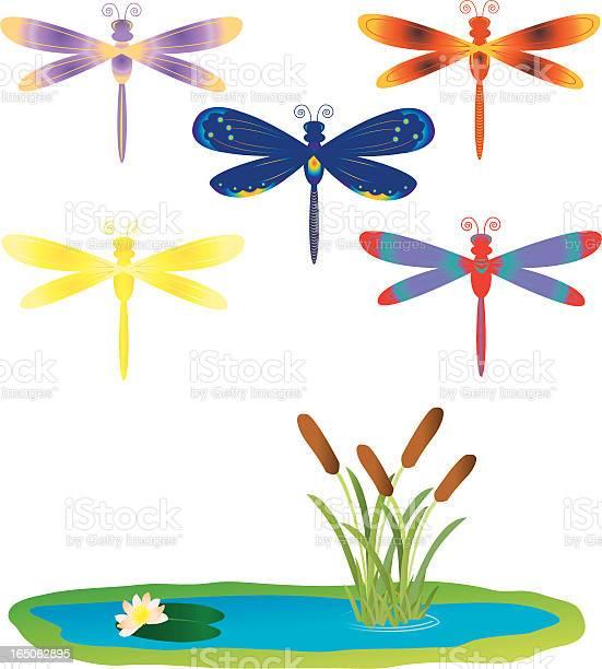 Stylized dragonflies vector id165062895?b=1&k=6&m=165062895&s=612x612&h=mjoczgh0thpiju8ucnwlpqja9qulq1dr5mek tgspn0=