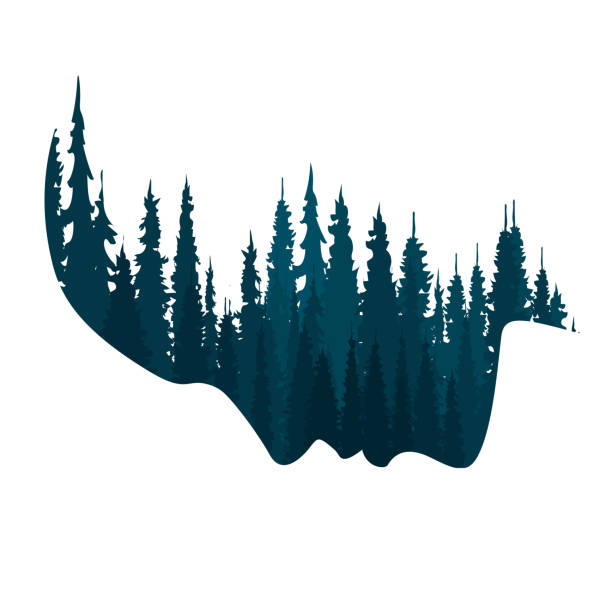 illustrazioni stock, clip art, cartoni animati e icone di tendenza di faccia stilizzata con foresta, doppia immagine, ecologia - woman portrait forest