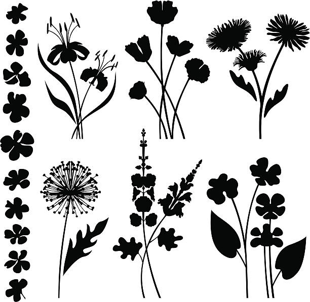stylized garden flowers - wildflowers stock illustrations, clip art, cartoons, & icons