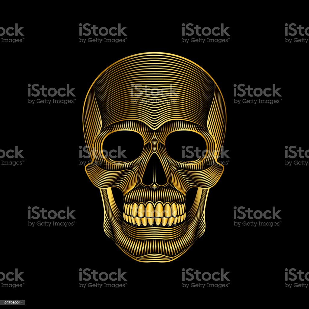 Stylized golden skull on black background vector art illustration