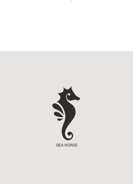 Stylized graphic Seahorse. Silhouette illustration of sea life. Sketch for tattoo on isolated white background. Vector flat icon Stylized graphic Seahorse. Silhouette illustration of sea life. Sketch for tattoo on isolated white background. Vector flat icon sea horse stock illustrations