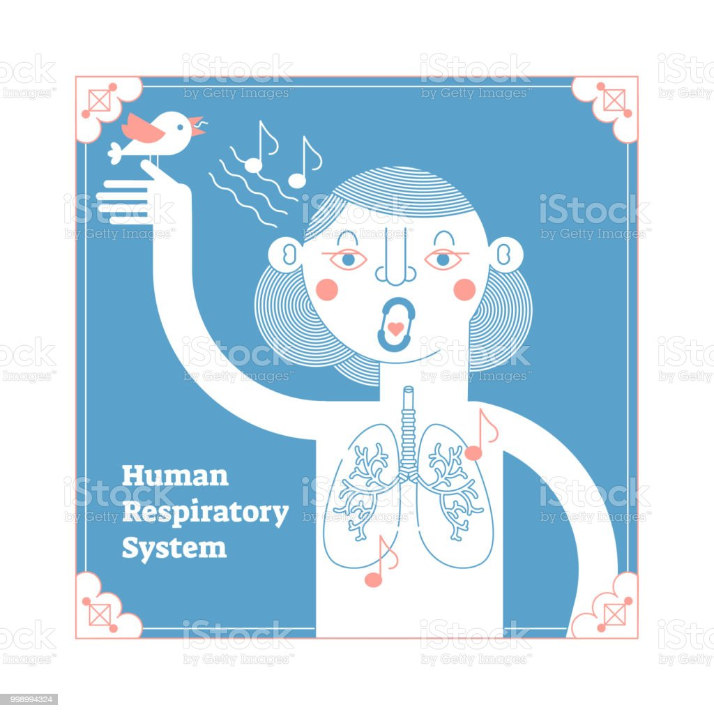 Stylized Human Respiratory System Framed Anatomical Vector ...