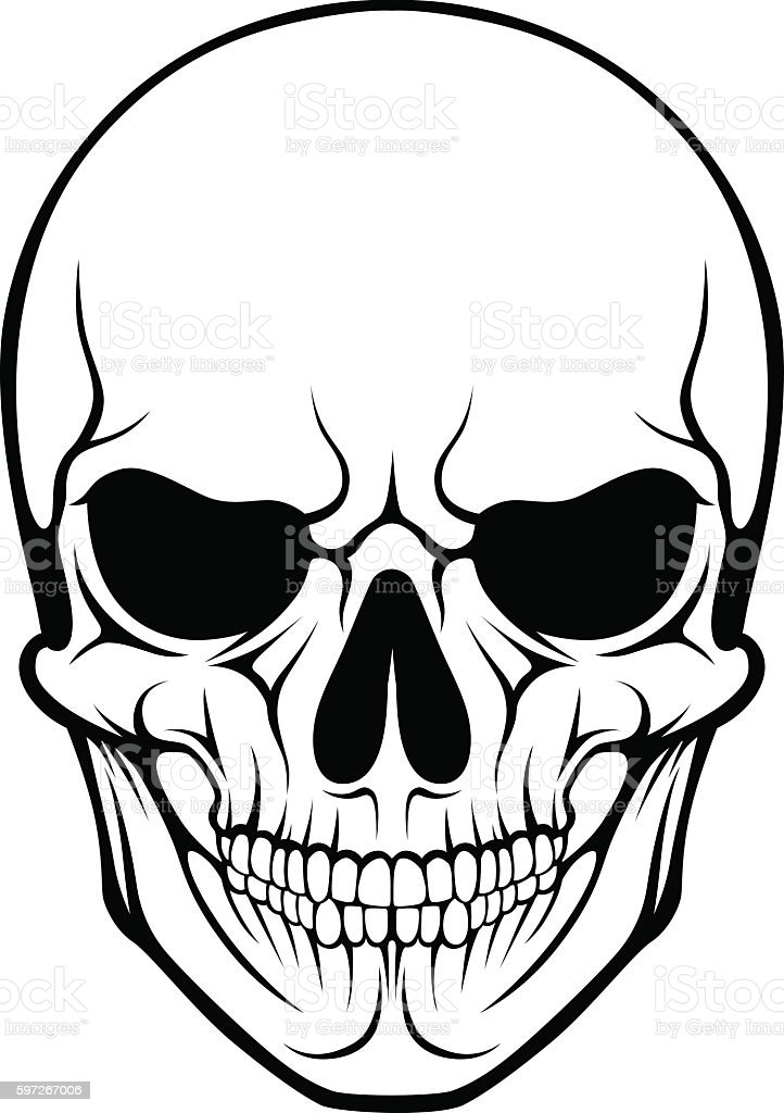 Stylized human skull royalty-free stylized human skull stock vector art & more images of adult