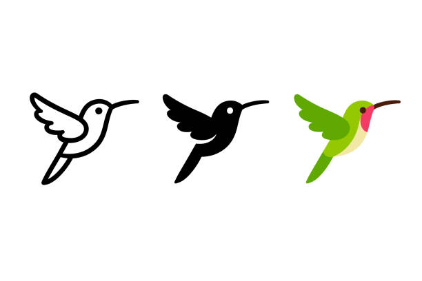 stylized hummingbird icon - birds stock illustrations
