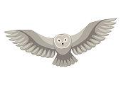 Stylized illustration of owl. Woodland forest animal on white background.
