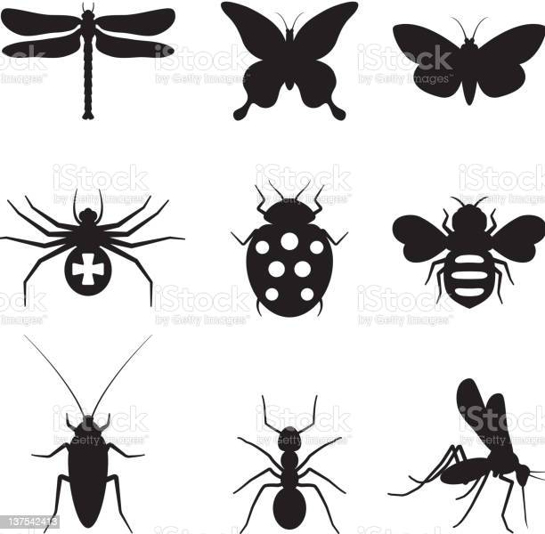 Stylized insects black and white royalty free vector icon set vector id137542413?b=1&k=6&m=137542413&s=612x612&h=x2rcco54 xkw xnxdeynovnrjtlywu2n5wop5xnkh6a=