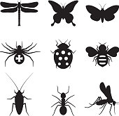 Stylized insects black and white royalty free vector icon set