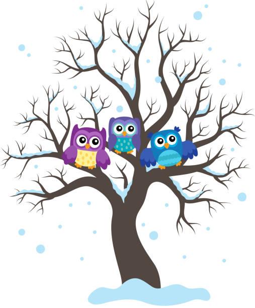 Best Three Owls Illustrations, Royalty-Free Vector Graphics