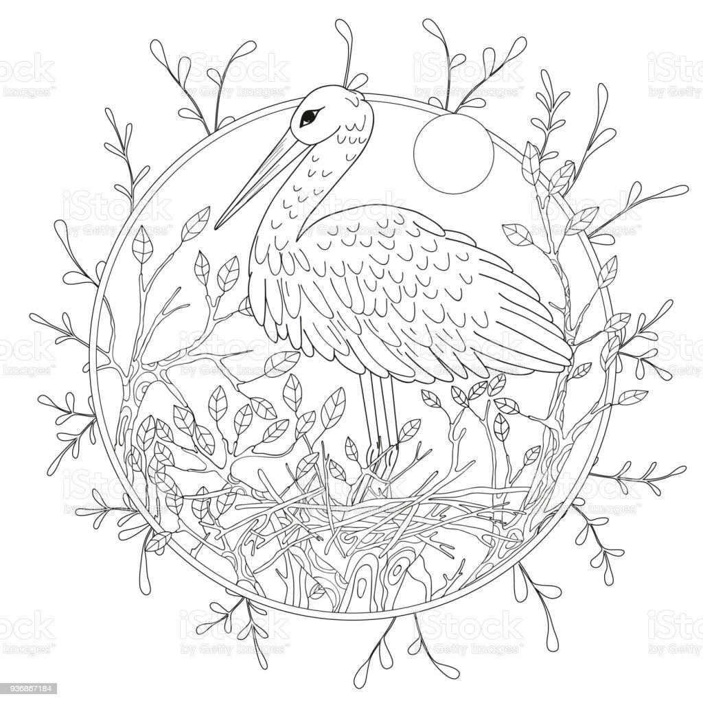 Stilize Pelikan Kuşu Yapraklar Arasında Serbest Kroki Için Yetişkin