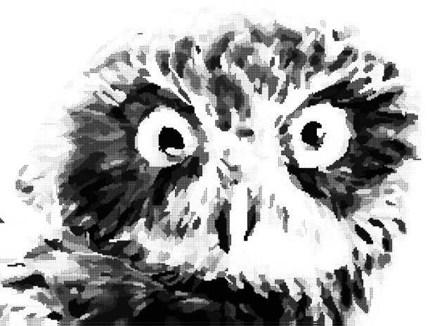 stylized portrait of owl in halftone vector black and white - black and white owl stock illustrations, clip art, cartoons, & icons