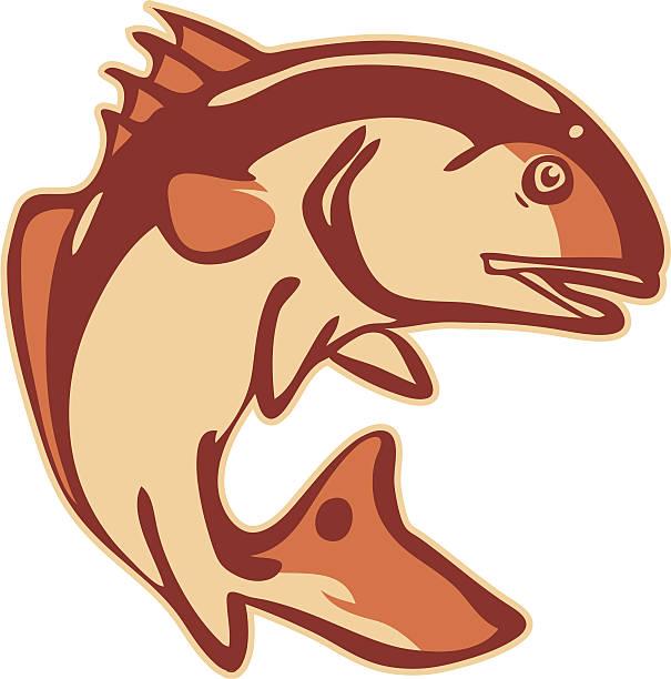 stylized redfish - redfish stock illustrations, clip art, cartoons, & icons