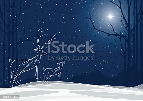Reindeer night