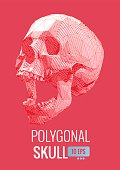 Low poly red vector skull front view with bright colorful background