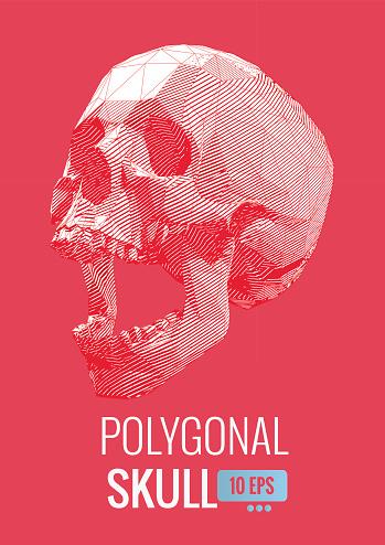 Stylized row line skull illustration