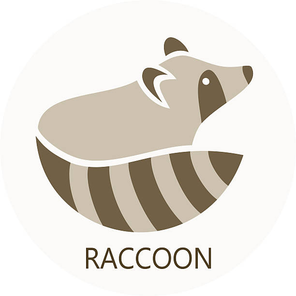 Stylized silhouette of a raccoon Stylized silhouette of a raccoon on light background raccoon stock illustrations