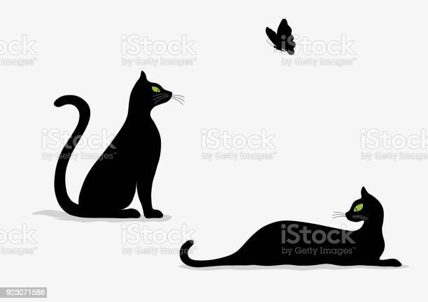 Stylized silhouette of black cats and butterfly vector id923071586?b=1&k=6&m=923071586&s=612x612&h=fefzr9a 9ltwmqz2dequi1xpoxixfeqsypo0iqjpphc=