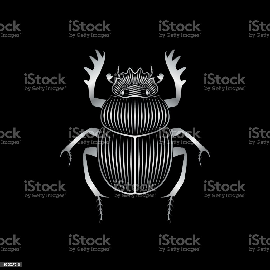 Stylized silver scarab on black background vector art illustration