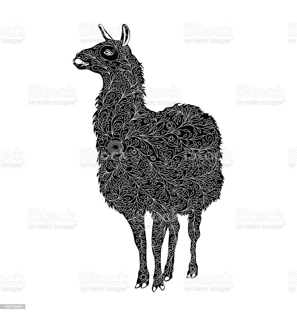 Stylized Vector Lama. black and white - illustrazione arte vettoriale
