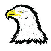 Stylized White American North Bald Eagle Head Tattoo Design. Logo Prey Bird Isolated on White Background. Predator Hawk Mascot. Symbol of Freedom.