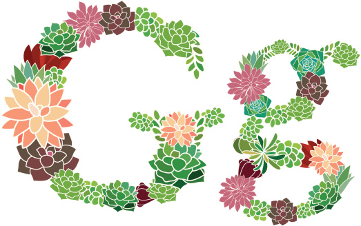 Succulent letter G and g