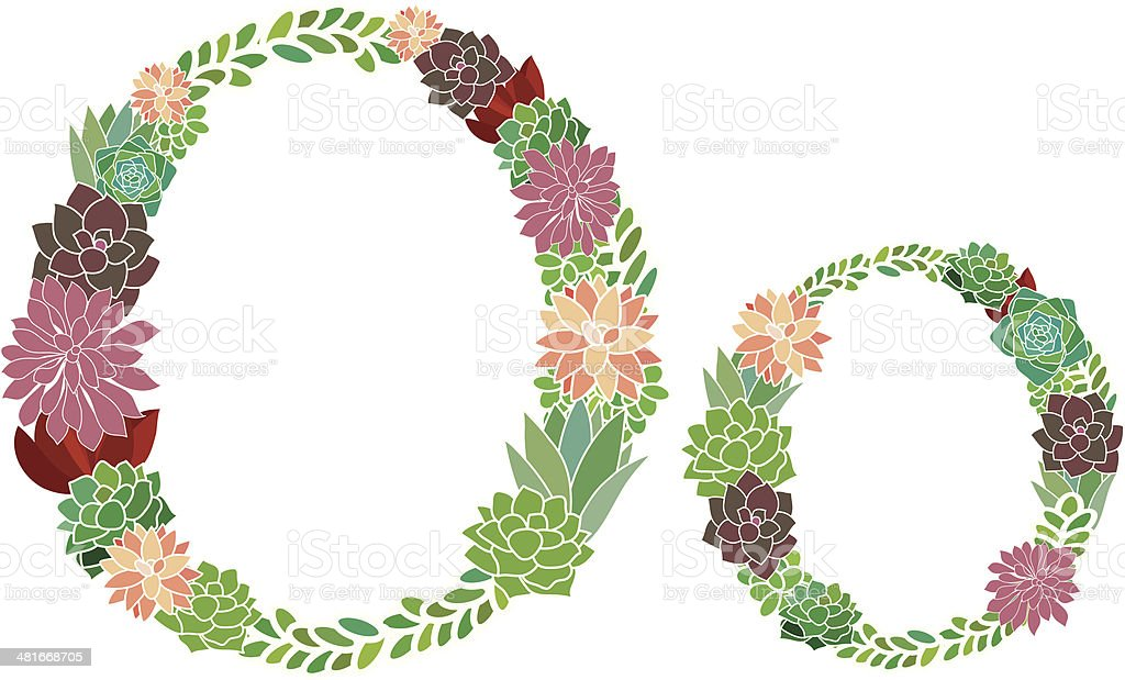 Succulent letter O and o royalty-free stock vector art