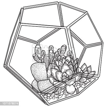 Three succulent plants in a glass terrarium with a pebble base.