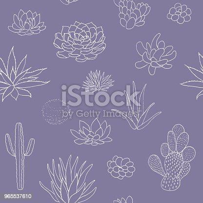 Succulent seamless pattern, hand drawn vector illustration. outline sketch chalk style. Succulent collection. nature elements. for cards, posters, banners, invitations greeting cards prints