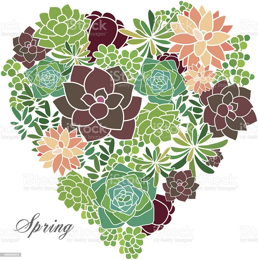 Succulent Spring Garden vector art illustration
