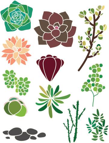 Succulent Spring Garden