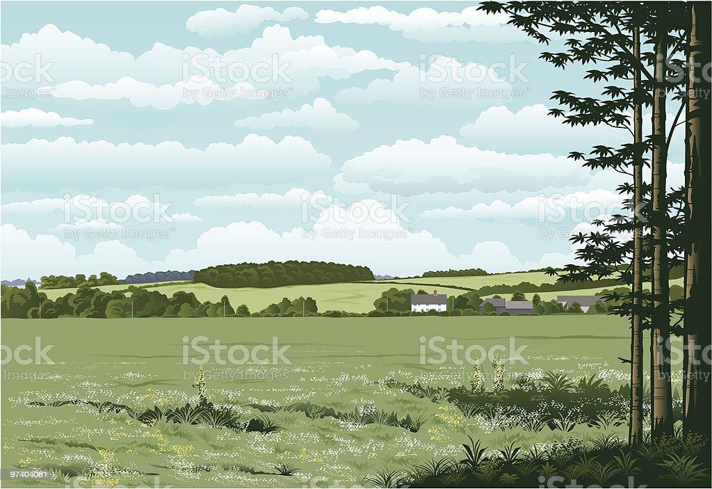 Suffolk woodland. vector art illustration