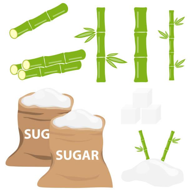 illustrazioni stock, clip art, cartoni animati e icone di tendenza di sugar, bag of sugar, sugarcane. flat design, vector illustration, vector. - canna da zucchero