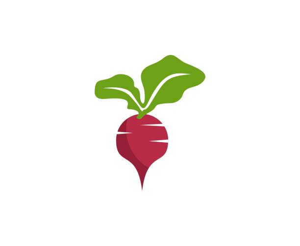 Sugar beet icon This illustration/vector you can use for any purpose related to your business. beet stock illustrations