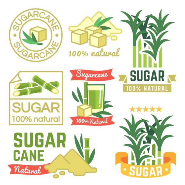 Sugar production labels, sugarcane farm badges and emblems vector set vector art illustration