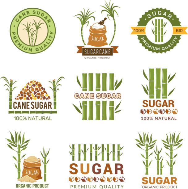 illustrazioni stock, clip art, cartoni animati e icone di tendenza di sugarcane plants. harvest farm sweets granulated production leaf vector symbols isolated - canna da zucchero