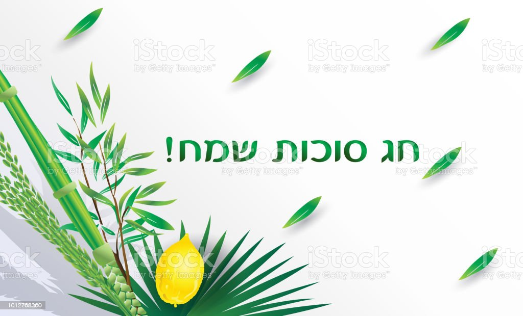 Sukkot greeting card sukkah etrog and lulav israel festival vector sukkot greeting card sukkah etrog and lulav israel festival vector royalty free sukkot m4hsunfo