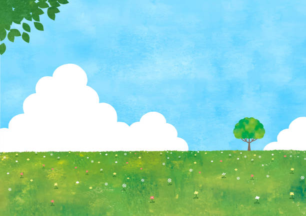 Sumer grass field and a tree Sumer grass field and a tree grass area stock illustrations