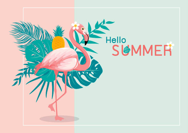 Summer banner design of flamingo and tropical leaves with copy space vector illustration Summer banner design of flamingo and tropical leaves with copy space vector illustration flamingo stock illustrations