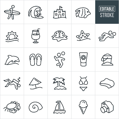 A set of beach icons that include editable strokes or outlines using the EPS vector file. The icons include a beach, surfer, surfing, sand castle, tropical fish, sun, ocean, sea, tropical drink, starfish, beach volleyball, dolphin, sea-life, flip flops, sunscreen, sand pail, scuba diving, beach umbrella, palm tree, bikini, coastline, crab, sea shell, sail boat, ice cream and camera to name a few.