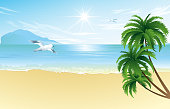 Summer beach with palm trees and seagull  vector illustration