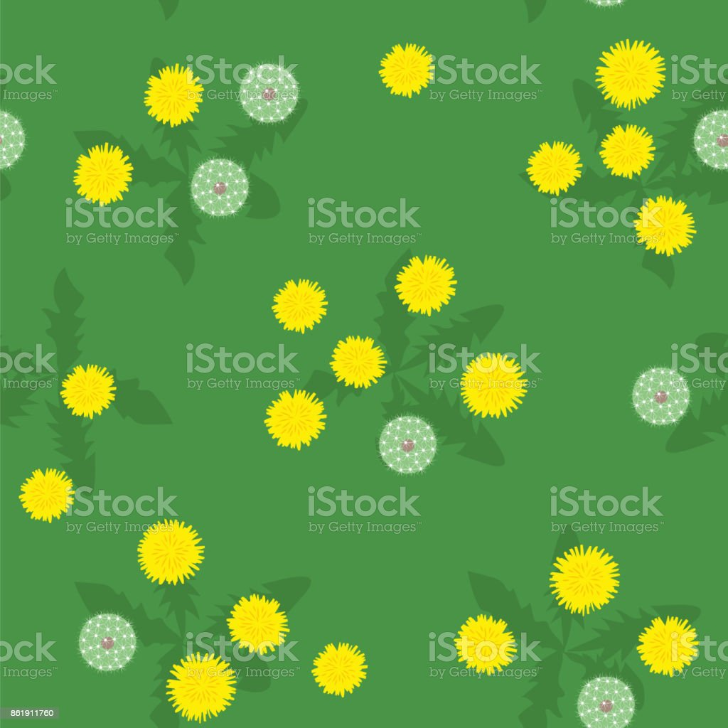 Summer bright yellow and white dandelions seamless pattern vector art illustration