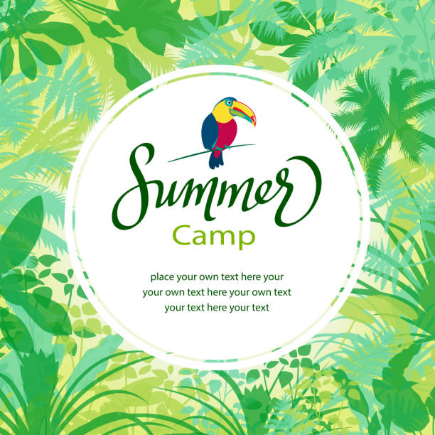 Summer Camp in Forest Toco toucan place card in forest background. amazon stock illustrations